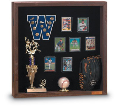 "24 x 24"" Standard 4"" Enclosed Display Case"