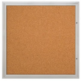 "48 x 48"" Double Door Illuminated Indoor Enclosed Corkboards"